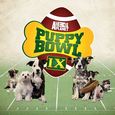 Puppy Bowl IX Webisode Narration